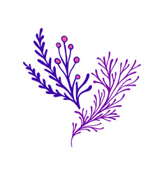 fantasy decorative twigs with leaves and berries vector image