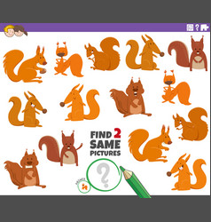 Find two same squirrels educational game vector