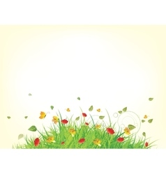 Green spring summer grass vector image