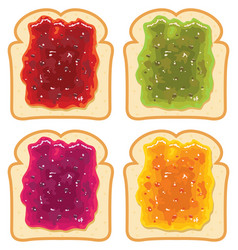Set white bread slices with fruit jam vector
