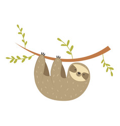 Sloth hanging on the tree adorable cartoon animal vector