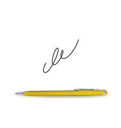 ball pen ans signature vector image