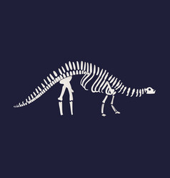 diplodocus dinosaur fossil skeleton icon on vector image