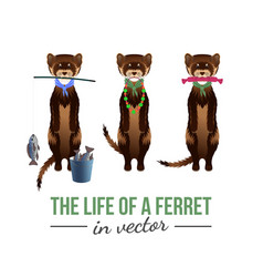 Ferrets with their toys vector