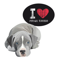 I love pitbull terrior vector