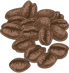 Isolated Coffee Beans vector