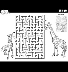 Maze with baby giraffe with mom coloring book page vector