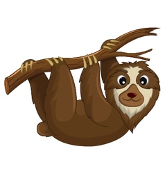 funny monkey cartoon hinging in the branch vector image vector image