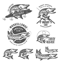 Musky fishing design elements vector image vector image