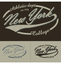 New York typography vector image vector image