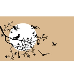Birds on a tree branch vector