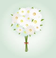Chamomile Flower or White Daisy Daisy Bouquet vector