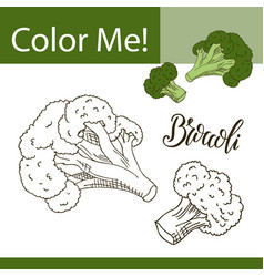 coloring book or page of vegetable vector image
