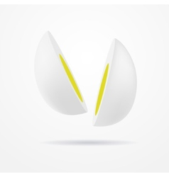 Cut egg vector image