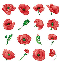 poppy remembrance day icons set cartoon style vector image