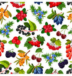 seamless pattern realistic summer berries isolated vector image