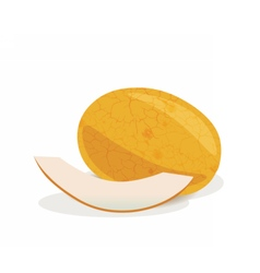 Yellow Melon fruits vector