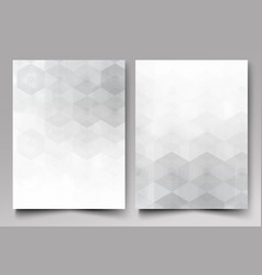 a template of the brochure design grey background vector image