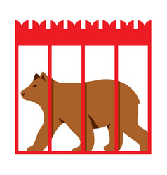 Bear in zoo cage flat style colorful vector