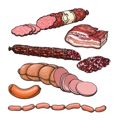 Meat products on a white background vector