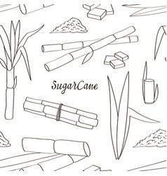 Sugar cane icons pattern vector