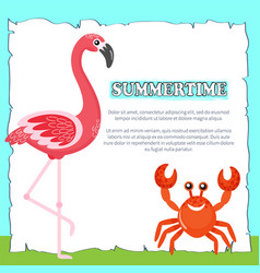 summertime poster with text pink flamingo and crab vector image