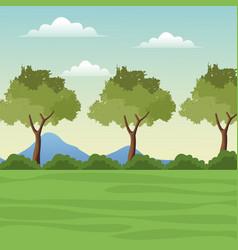 landscape tree mountain grass vector image