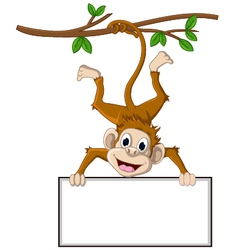 monkey cartoon holding blank sign vector image vector image