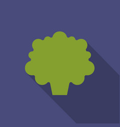 broccoli icon in flat style vector image