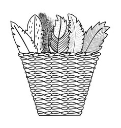 basket bohemian with feathers decorative vector image