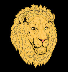 beautiful lion artwork detailedafrican predator vector image