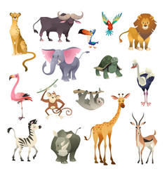 Jungle wild animals savannah forest animal bird vector