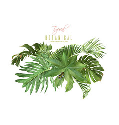 Tropic leaves composition vector