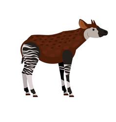 Unique tropical animal vector