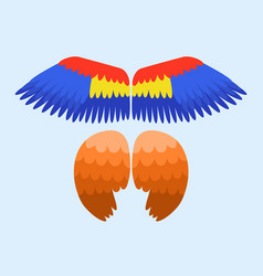 wings isolated animal blue feather pinion bird vector image