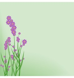 Violet Small Flowers vector image vector image