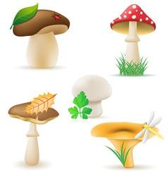 set icons mushrooms vector image vector image