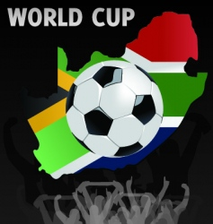 south African world cup vector image