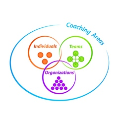 Coaching areas diagram vector