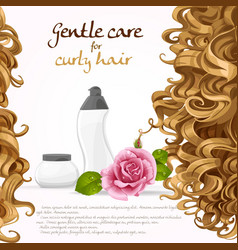 Curled hair care background vector image