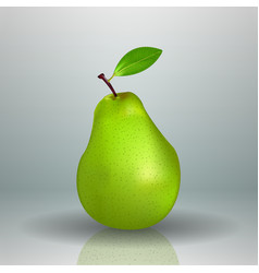 fresh green pear fruit isolated background vector image