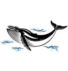 Big wild whale in ocean water vector image vector image