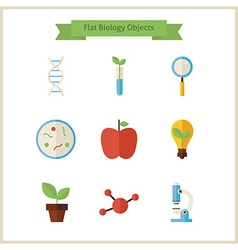 Flat School Biology and Science Objects Set vector image