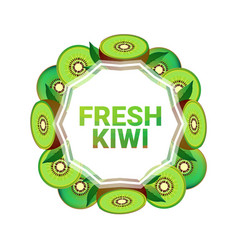 Kiwi fruit colorful circle copy space organic over vector