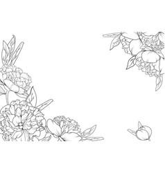 peony rose garden flowers corner border frame vector image