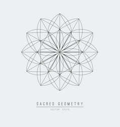 sacred geometry line element flower of life vector image