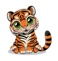 Tiger with big eyes vector