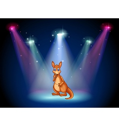 A stage with a kangaroo vector image vector image