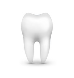 single white tooth vector image vector image