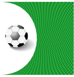 black and white ball against a green background vector image
